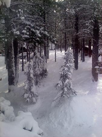 Arizona Mountain Inn & Cabins: Let it snow!!