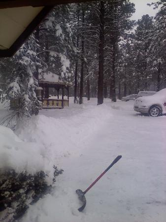 Arizona Mountain Inn & Cabins: And more snow!!!!!