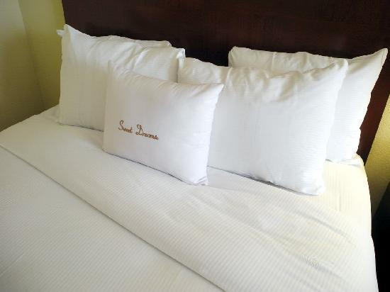 DoubleTree by Hilton Hotel Princeton : Comfortable beds