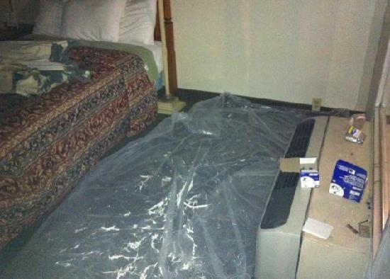 Budget Inn Alcoa: The OTHER room we were sent to...