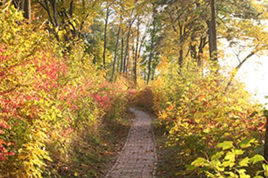 Lake Geneva, WI: Lake shore path on south shore