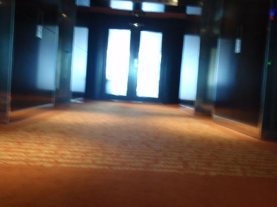 โรงแรมพาร์ค พลาซ่า เวสต์มินสเตอร์บริจด์ ลอนดอน: the hallway