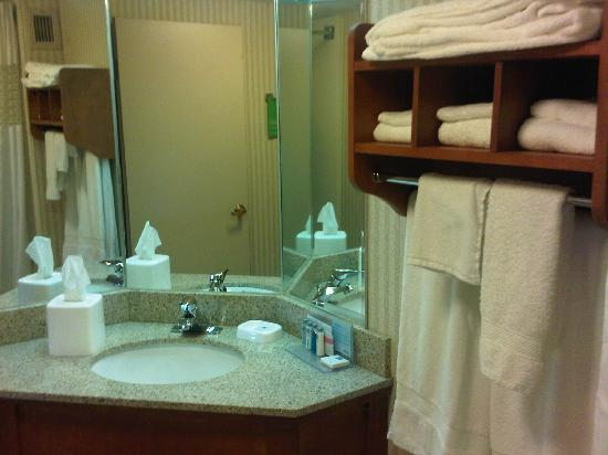 Hampton Inn Toledo South Maumee: Bathroom