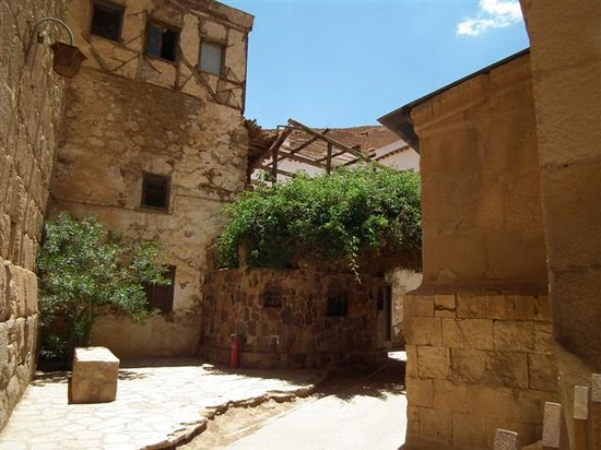 Sol Verginia Hotel : Fire bush, Monastery of St. Catherine