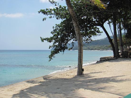 Alang-Alang Boutique Beach Hotel: beach