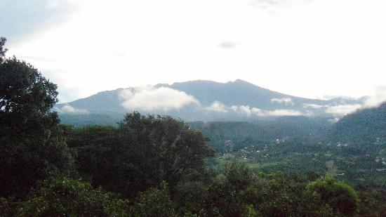 La Montana y el Valle Coffee Estate Inn: The view from our balcony