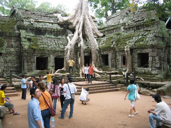 You have to see it to believe it foto di angkor wat siem reap