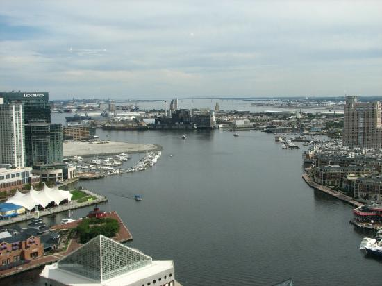 Top of the World Observation Level: View of the Harbor