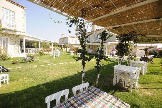 Panda Alacati Hotel: Bahçe 3