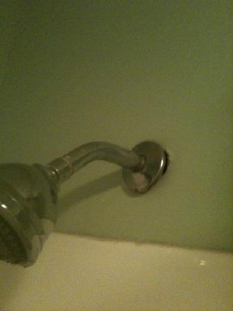 Super 8 Kosciusko: shower head about to fall out the wall