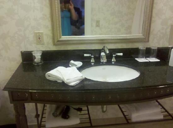 Renaissance Pittsburgh Hotel: Beautiful sinks!