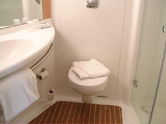 Ibis Loriol Le Pouzin : Bathroom