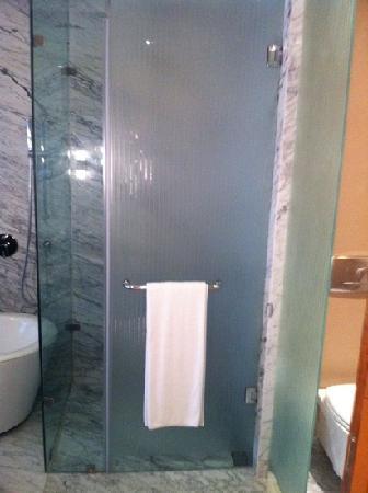 Hyatt Regency Pune: shower