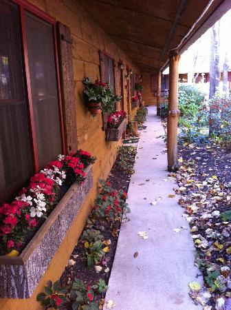 Laurelwood Inn: Outside our front door