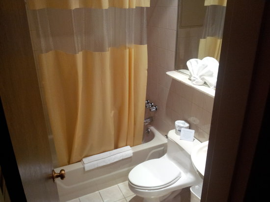 Days Inn by Wyndham Hotel New York City-Broadway: The bathroom