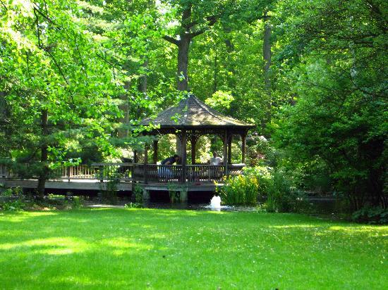 Toledo Botanical Garden Art Show