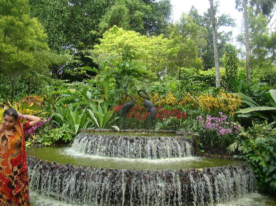 สวนกล้วยไม้แห่งชาติสิงคโปร์: Water feature
