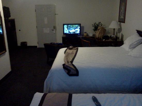 Best Western Corvallis: TV across from the beds