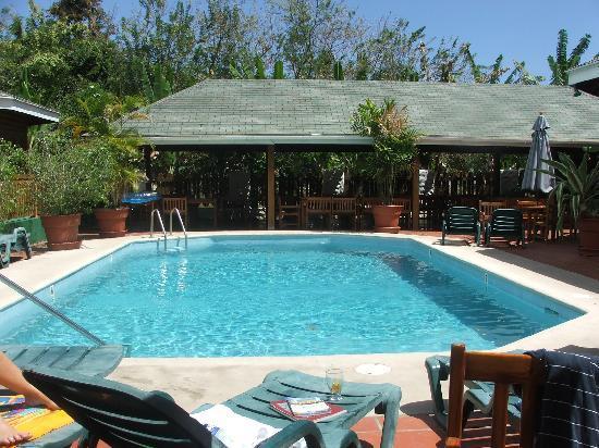 Shepherd's Inn: nice pool