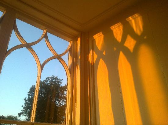 Trereife House: Morning sunlight in Coleridge