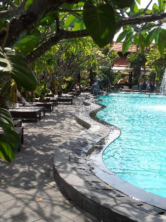 Febri's Hotel & Spa: The Pool