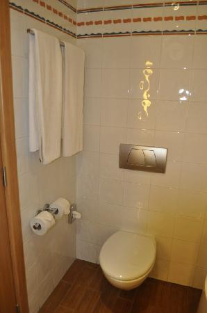 Exe Madrid Norte: WC