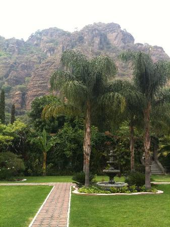 La Buena Vibra Retreat & Spa: the hotel gardens