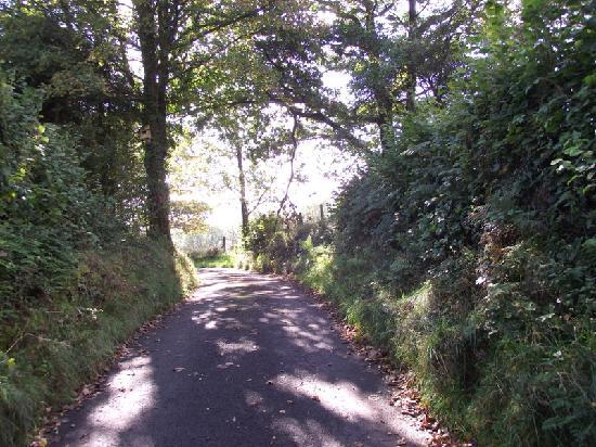 Aberhyddnant Farm Cottages: The road to tranquility