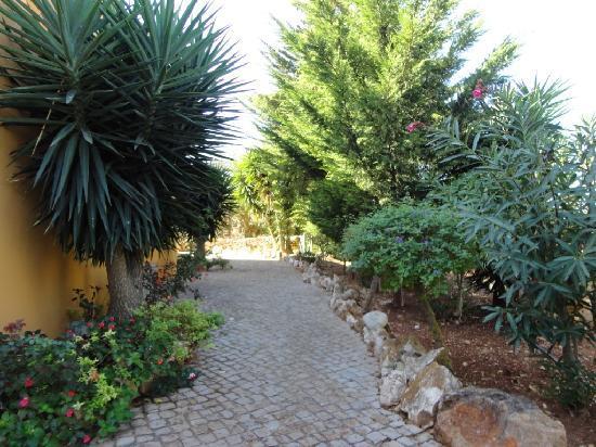 Montinho de Ouro: The side path