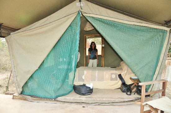 Flatdogs Camp: Safari tent #12