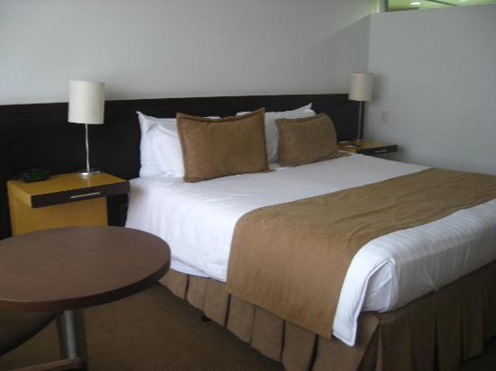 Hotel Movich Las Lomas: Typical Room