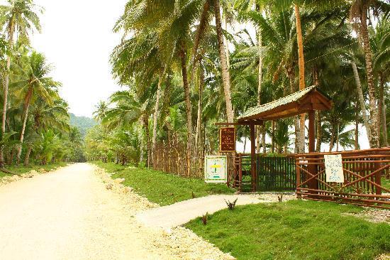 Bamboo Garden Bar and Lodging: The entrance
