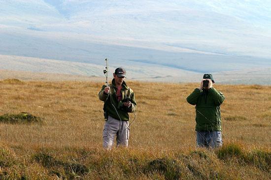Ballycroy National Park: Conservation Rangers Radio-tracking Wildlife