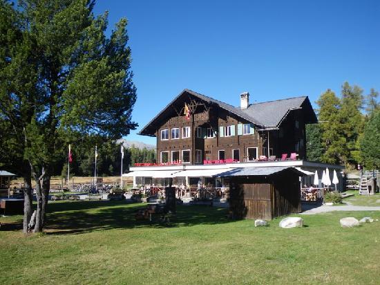 Hotel Restorant Lej da Staz: Hotel Lej da Staz, Blick vom See her