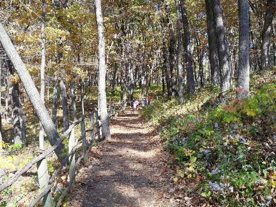 Effigy Mounds National Monument: Trail