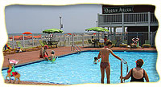 Ocean Mecca Motel: ocean front pool