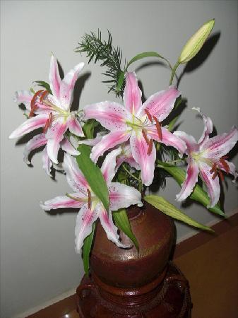 Bougainvillea Guest House Goa: Fresh Lillies