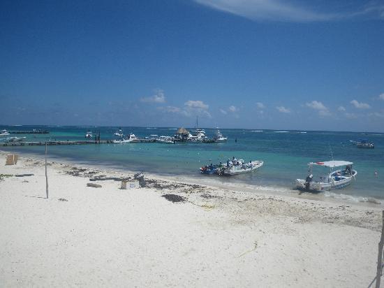 The Original Snorkeling Adventure: la playa