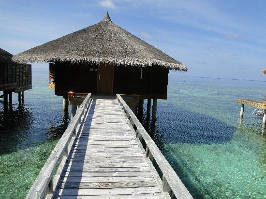 Kuramathi Island Resort: JWV 270