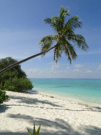 Kuramathi Island Resort: One of the Beaches