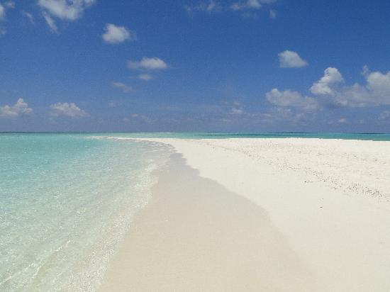 Kuramathi Island Resort: Sandbank
