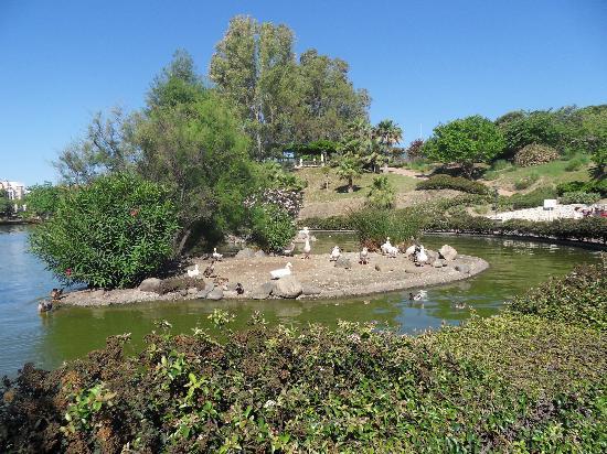 Palia La Roca Hotel-Club: beautiful park, just a short walk from the hotel