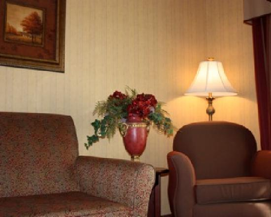 Town & Country Inn and Suites Quincy: Extra elbow room - standard