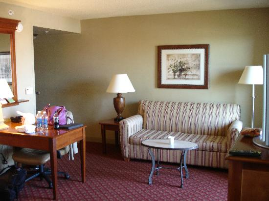 Hampton Inn & Suites Greenville - Downtown - Riverplace: Suite