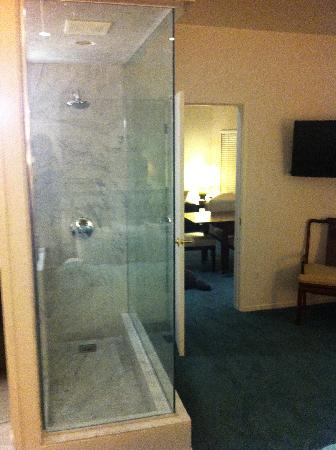 Pier View Suites: Master shower