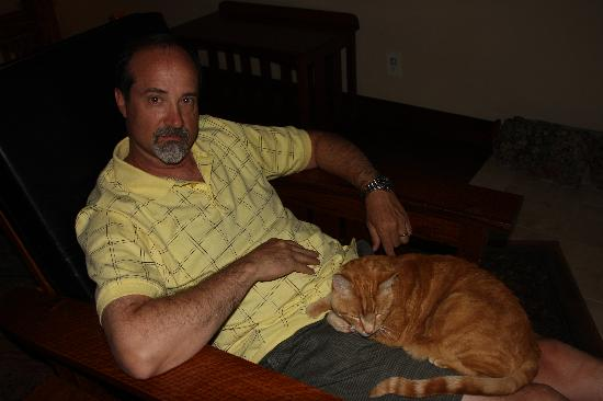 Five Pine Lodge & Spa: Roy the lodge cat -- we let him in our room -- he is OPTIONAL  ;-)