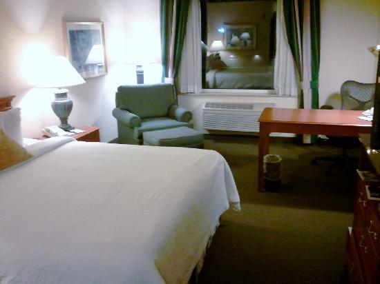 Hilton Garden Inn Green Bay: Bedroom