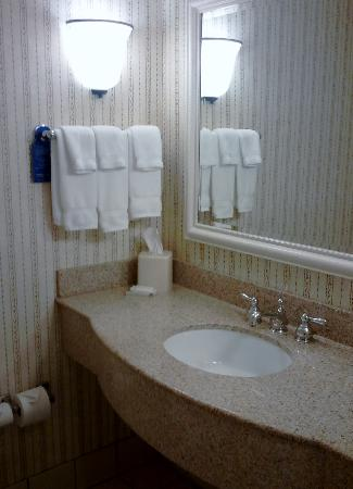 Hilton Garden Inn Green Bay : Bathroom