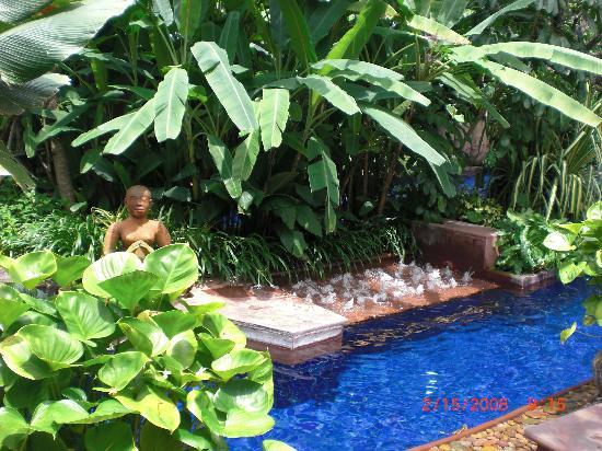 โรงแรมเชอราตัน แกรนด์ สุขุมวิท: Pool Oasis