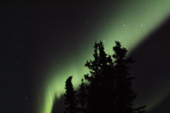 Tolsona Lake Resort: Northern Lights!!!
